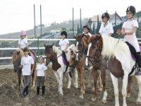 cavalli e pony con alcuni bambini