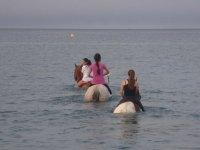 passeggiate a cavallo nel mare
