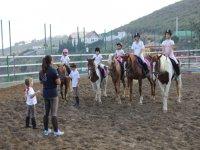 lezioni di equitazione in arrocha
