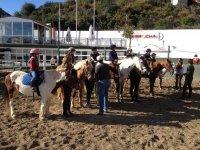 bambini caricati su pony