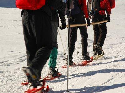 Tarbuck Guías de Montaña Raquetas de Nieve