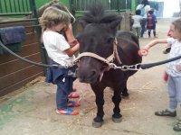 actividad con niños