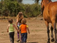 Peques llevando al caballo