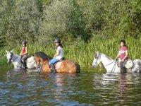 Con los caballos en el rio