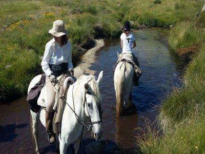 A caballo Palencia Montaña Palentina Rutas a Caballo
