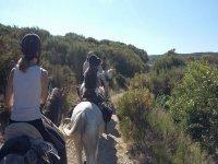 a caballo camino