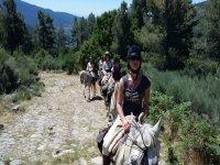 a caballo en fila