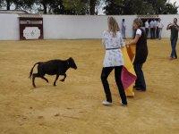 Quiebros a la vaquilla