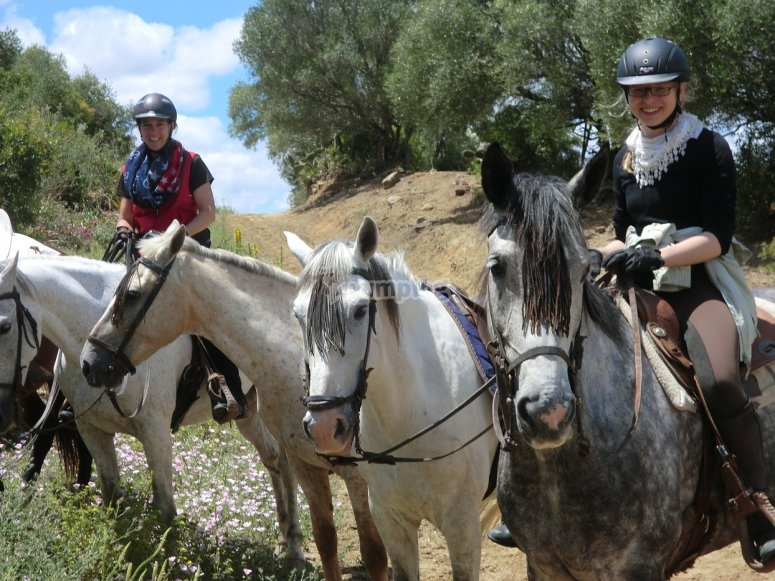 Horse riding tours in the beach