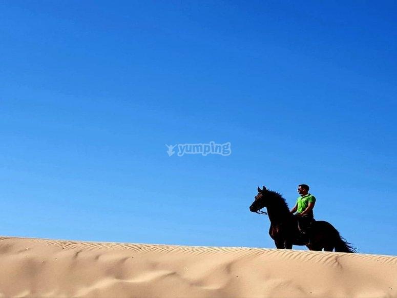 A caballo en la playa de Bolonia