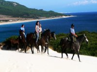 Guided horse riding tours