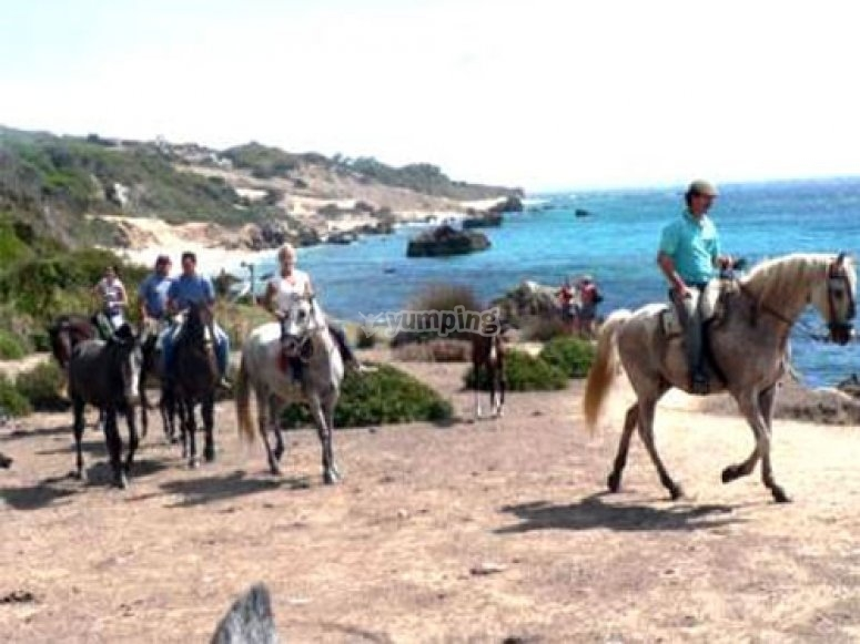 Horse riding route in the beach