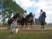 Juegos de pelota con caballos
