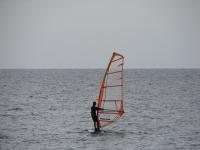 Profesional del windsurf