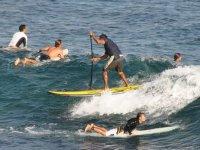 冲浪和桨冲浪