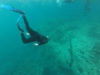 在公海潜水
