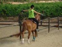 假期骑马学校