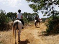 Paseando por Tenerife a caballo