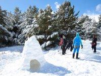 在家庭中建造雪橇