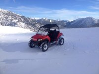 Buggy in the snow