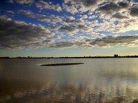 沼泽地的日落