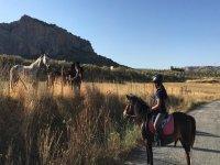 Saluto altri cavalli