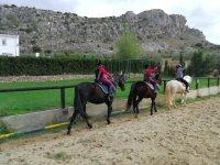 A partire dalle strutture per i cavalli