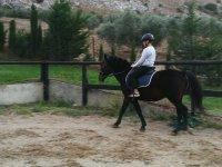 Apprendimento delle tecniche di equitazione