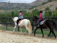 Al campo di cavallo