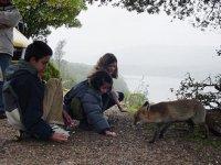 Niñoz y zorro