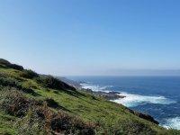 Ladera verde sobre el mar