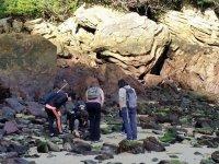 Observando las rocas de la costa
