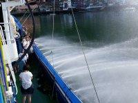 Observando los chorros en el barco