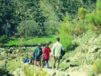 Hiking through natural environments