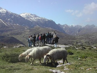 Escuela Asturiana Senderismo