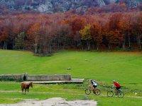 En bici por los paisajes riojanos