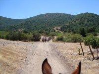 Paseo a caballo para dos personas