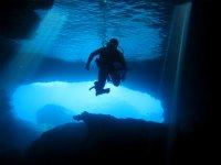 Anemona沙洞穴潜水员,潜水员在光