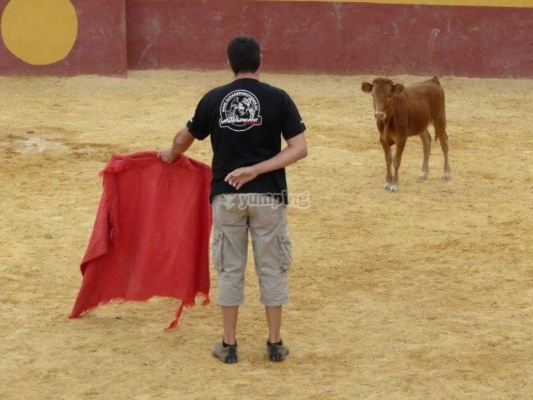 等待小母牛