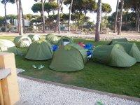 Tiendas verdes para acampar