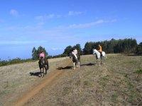 Crossing the field on horseback