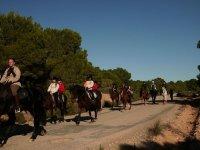 Saliendo por el campo a caballo