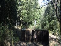 Paintball stage