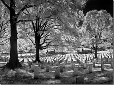 Cena y noche de terror en el Cementerio