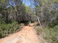 路径和自行车