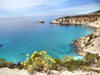 One of the coves of Ibiza