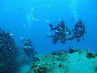 潜水船游览或白水初学者