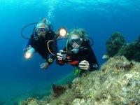 潜水潜水兰萨罗特标志