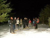 Group of snowshoes