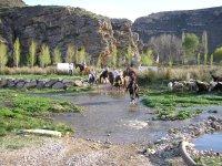 Cruzando el rio a lomos de un precioso caballo
